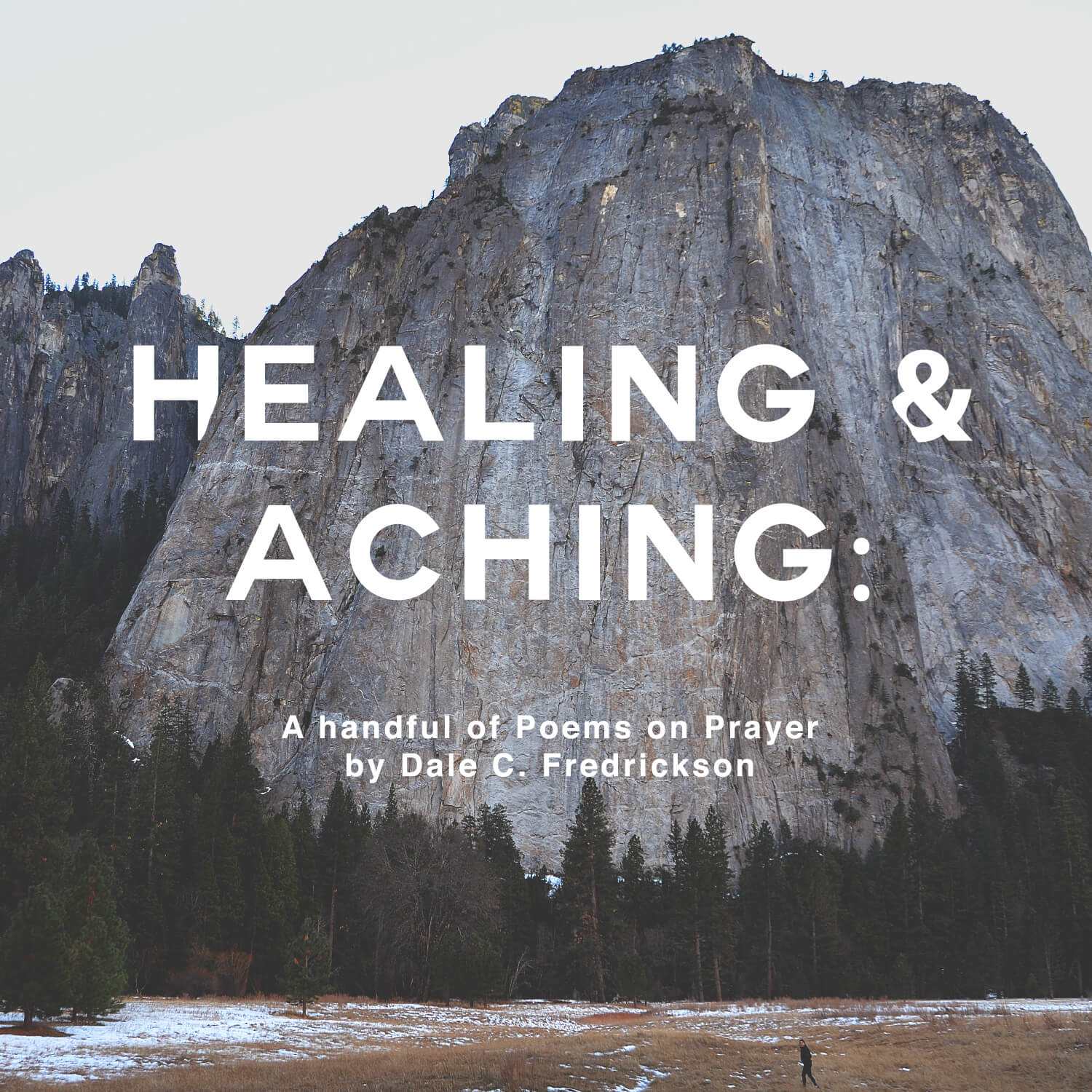 Healing and Aching book cover