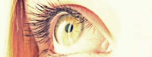 Ally's Eye